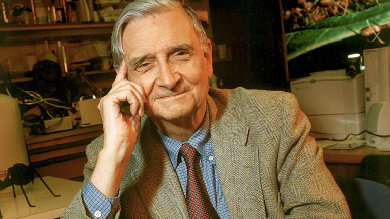 Edward O. Wilson | One of the World's Most Distinguished Biologists